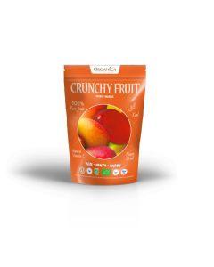 Bio Mango gefriergetrocknet (18g)